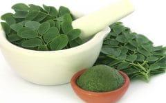 Os 10 Benefícios do Óleo das Folhas de Moringa Para Saúde