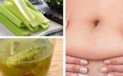 As 24 Receitas Caseiras Para Derreter a Gordura da Barriga!