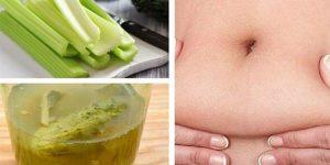 receita para derreter gordura da barriga