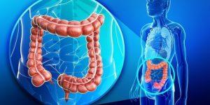 Como Acabar com a Infecção Intestinal