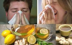 Os 15 Remédios Caseiros Para Resfriado