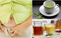 Os 10 Remédios Caseiros Para Eliminar a Gordura da Barriga!