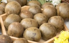 Os 8 Benefícios da Fruta dos Monges Para Saúde