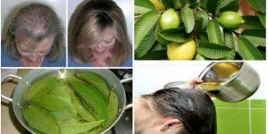 fortalecer e crescer os cabelos