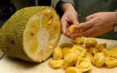 Acabe com o Câncer Usando Essa Fruta Deliciosa!